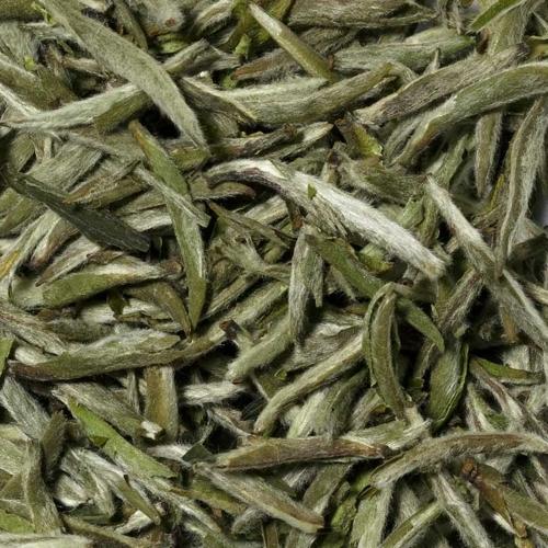 Yin Zhen Silverneedle Tee