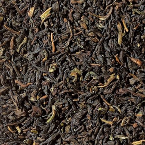 Nilgiri Thiasola BIO Tee aus Südindien